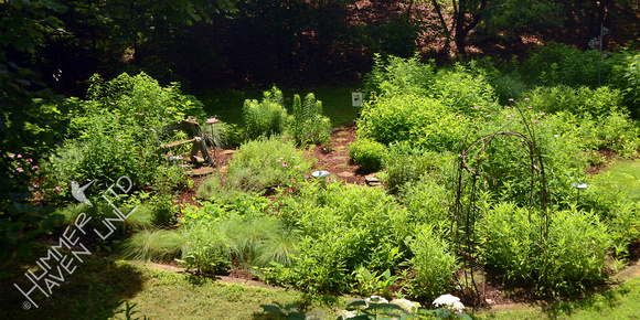 Overview of the Songbird and Butterfly Garden on the Summer Solstice - June 21, 2015