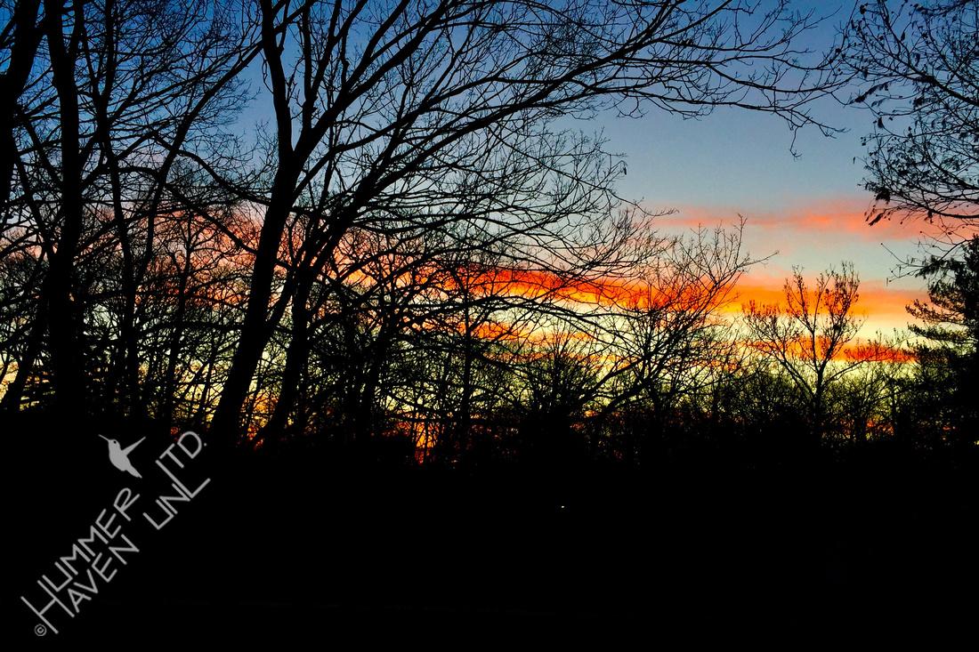 12-25-19 Christmas Sunrise