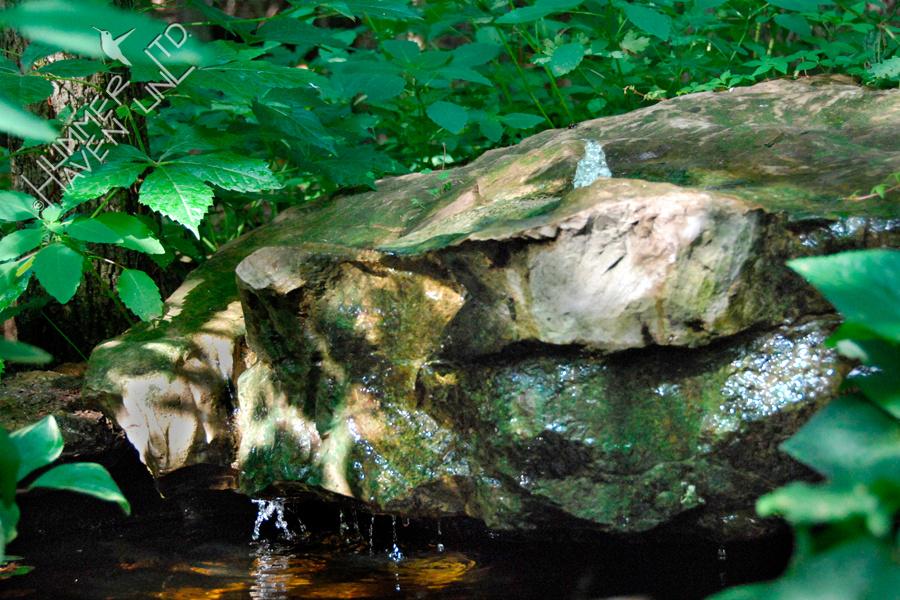 Bubbler Rock 6-20-08