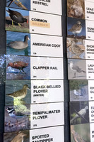 Species Sightings Board at Ding Darling National Wildlife Refuge