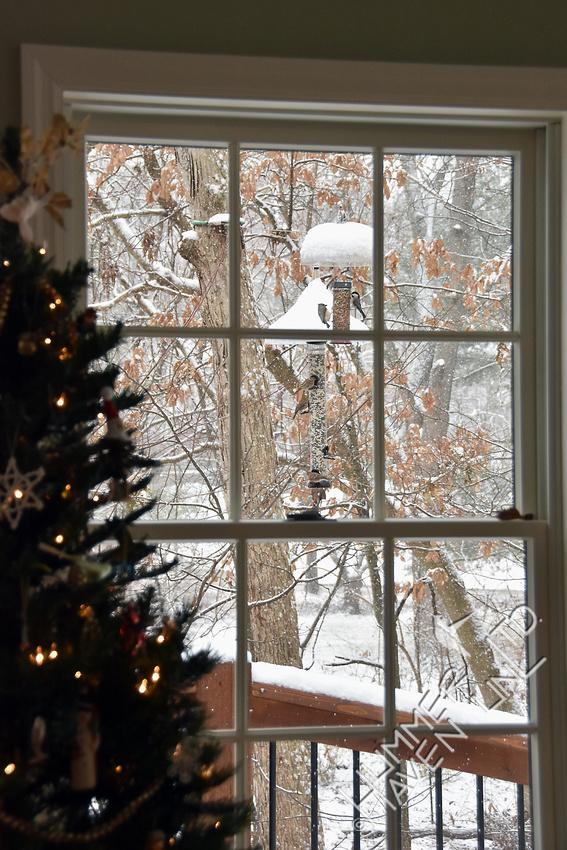 Feeders in snow  12-24-17