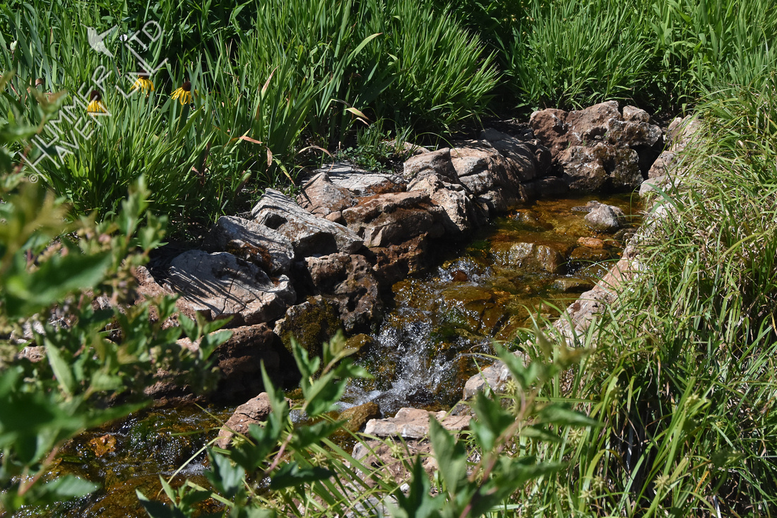 Brightside Water Feature 6-7-17