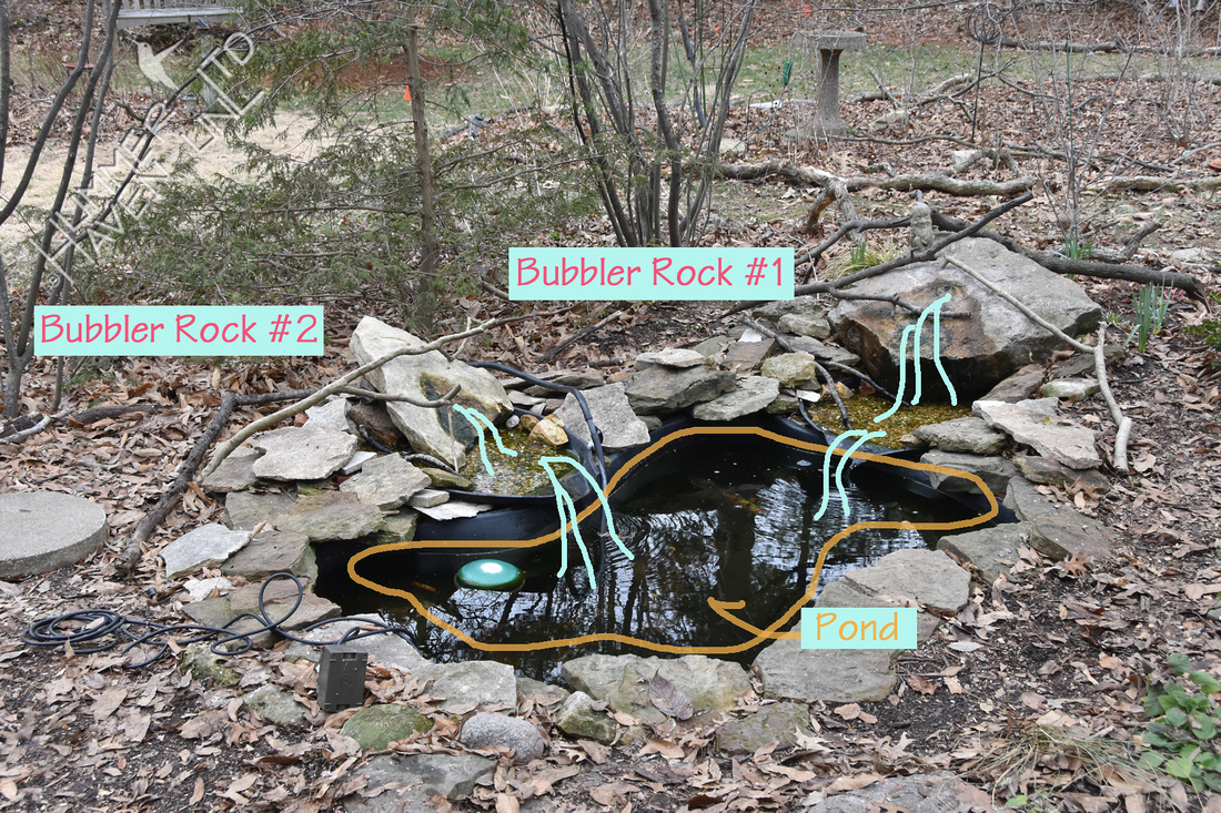 Before View of Poley Bubbler Pond 3-18-18